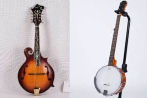 Mandolin Vs Banjo – How Do They Compare?