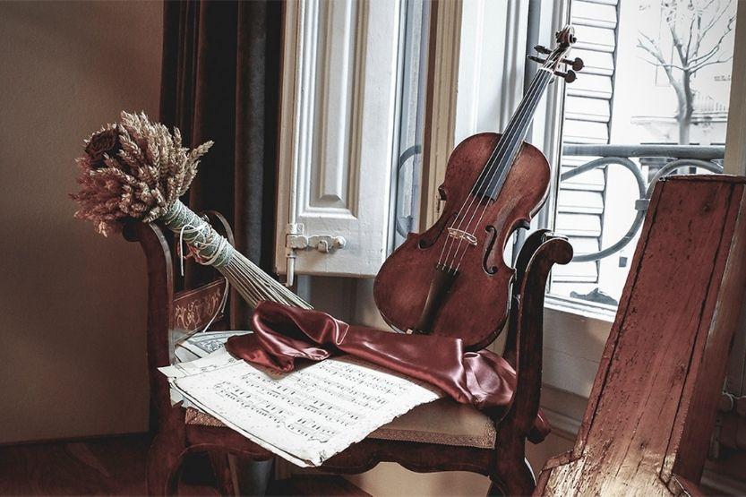 violin types