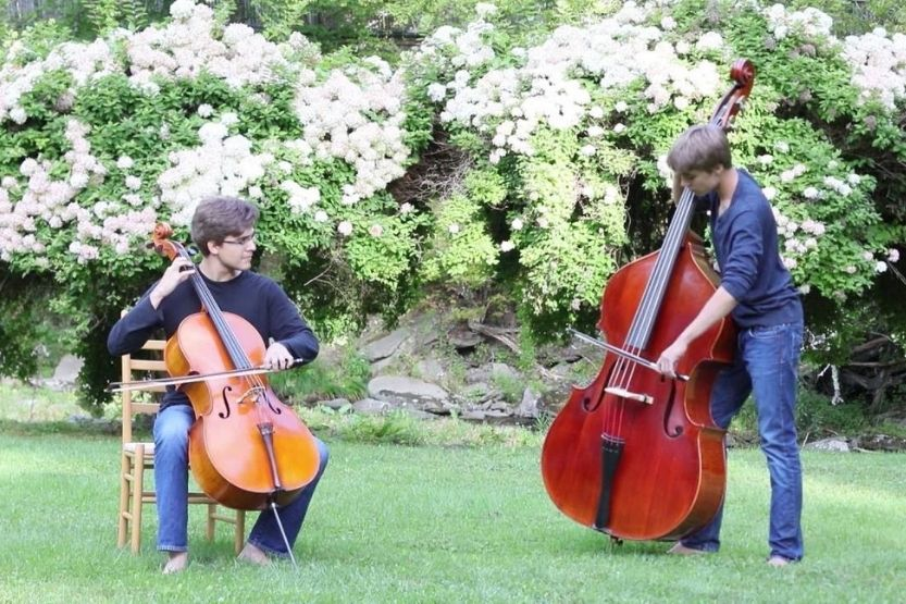 Cello Vs Bass – What Are Their Differences?