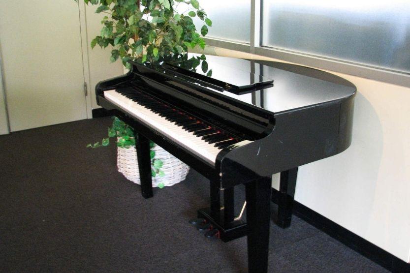 how many keys on a grand piano