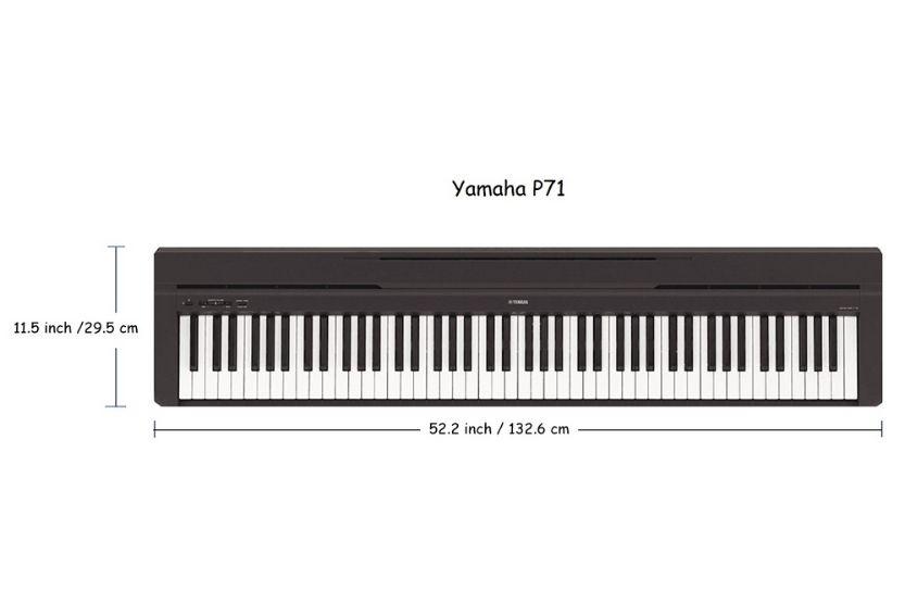 yamaha p71 vs p45