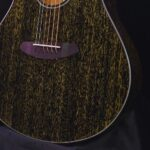 Breedlove Rainforest S Guitar Specs and Review