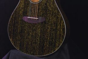 Read more about the article Breedlove Rainforest S Guitar Specs and Review