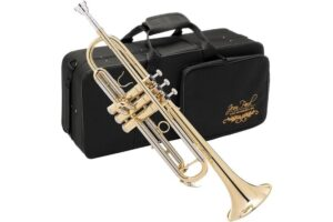 Read more about the article Jean Paul TR-330 Student Trumpet Specs and Review