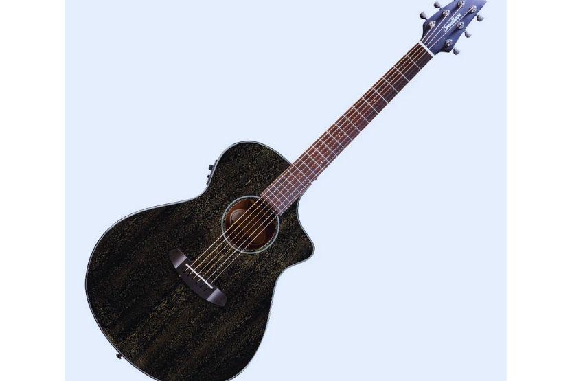 breedlove rainforest s guitar review
