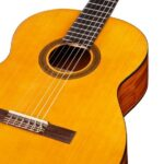 Cordoba C1 Acoustic Guitar Specs and Review