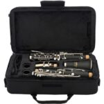 Jean Paul CL-300 Student Clarinet Specs and Review