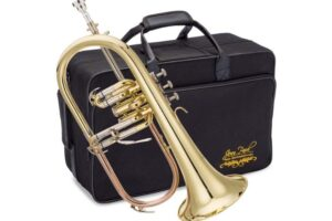 Read more about the article Jean Paul FH-430 Flugelhorn Specs and Review