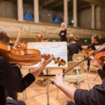 Viola vs Violin: What Are the Differences?