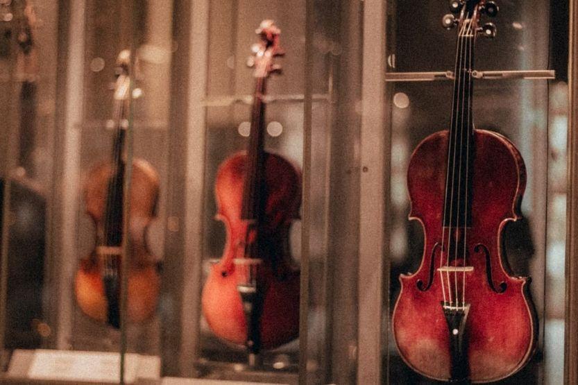 viola vs violin sound