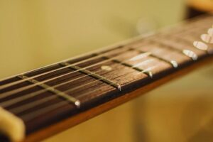 Read more about the article Rosewood vs Maple Fretboard – What is the Difference Between Them?
