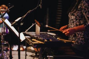 Read more about the article Xylophone Vs Marimba – What Is the Difference Between Them?
